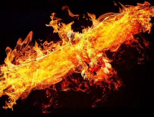 Phoenix, le Destin de Gallja